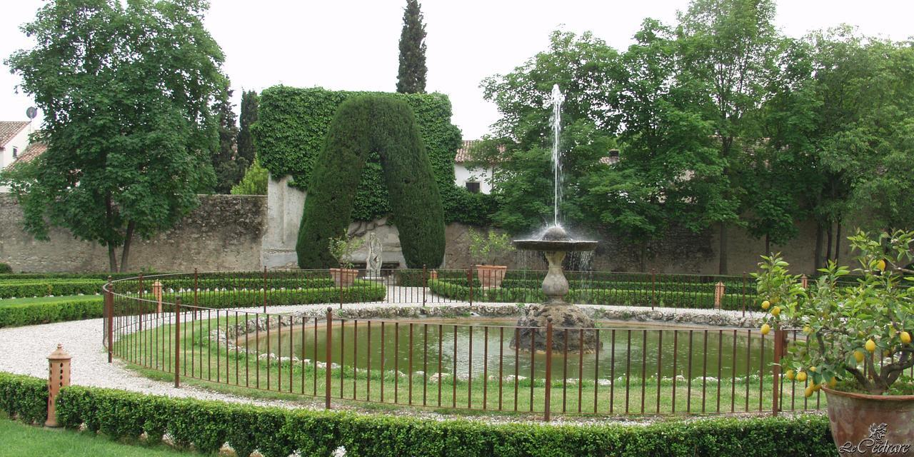 Path in the park of the restaurant with fountain